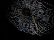 Understanding Dark Analytics: Potential, Advantages & Risks