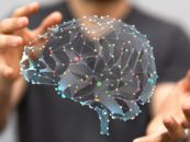 Machine Learning: What It Can and Cannot Do For Your Organization