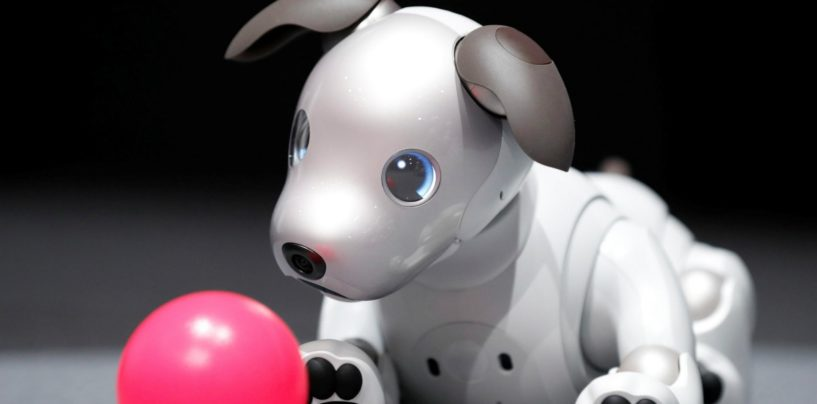 Sony's New Aibo to be Available in the US in Sept for $2,899