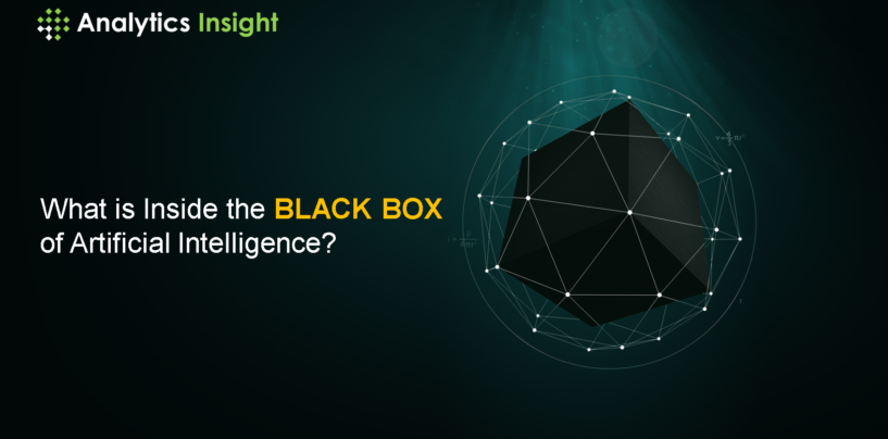 What is Inside the Black Box of Artificial Intelligence?
