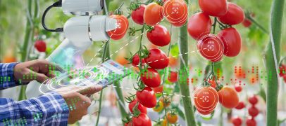 The Power of Artificial Intelligence in Agriculture