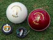 SmartBall Embedded With Microchip To Hit Pitch Soon Providing Better Cricket Analytics