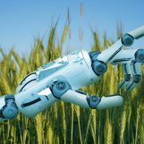 Top AI Advances Changing the Face of Agriculture in Modernised World