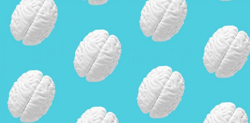 Top 5 Foundation Principles of AI