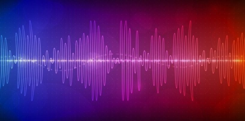 Leveraging Real-Time Speech Analytics to Drive Business Value