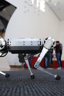 MIT's Mini Cheetah Robot Can Frolic, Fall, Flip and Play Soccer