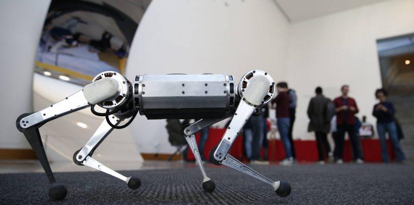 MIT's Mini Cheetah Robot Can Frolic, Fall, Flip and Play Soccer