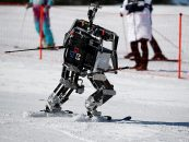 AI Winter is Coming: Hear from Experts, What Could Possibly Happen?