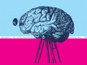 Is Cognitive Science the Future of AI?