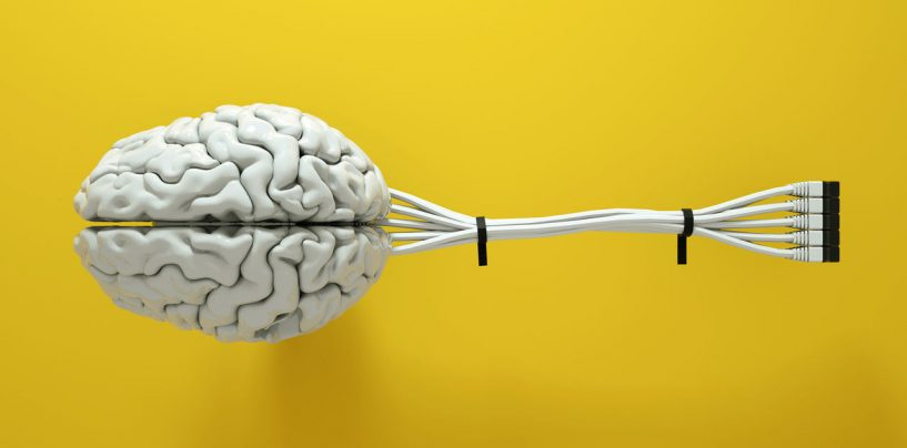 The Amalgamation of Human Brain and Artificial Intelligence