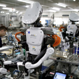 Employable Skills in Case Robots Take Away Jobs