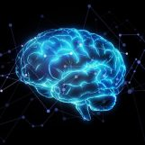Augmented Intelligence is the New Artificial Intelligence