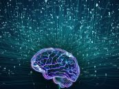 Making Deep Learning Model Intelligent with Synthetic Neurons